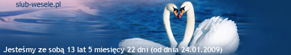 http://s8.suwaczek.com/200901243338.png